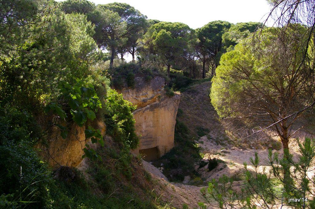 Cuevas-Canteras de la Sierra de San Cristóbal - Lista Roja