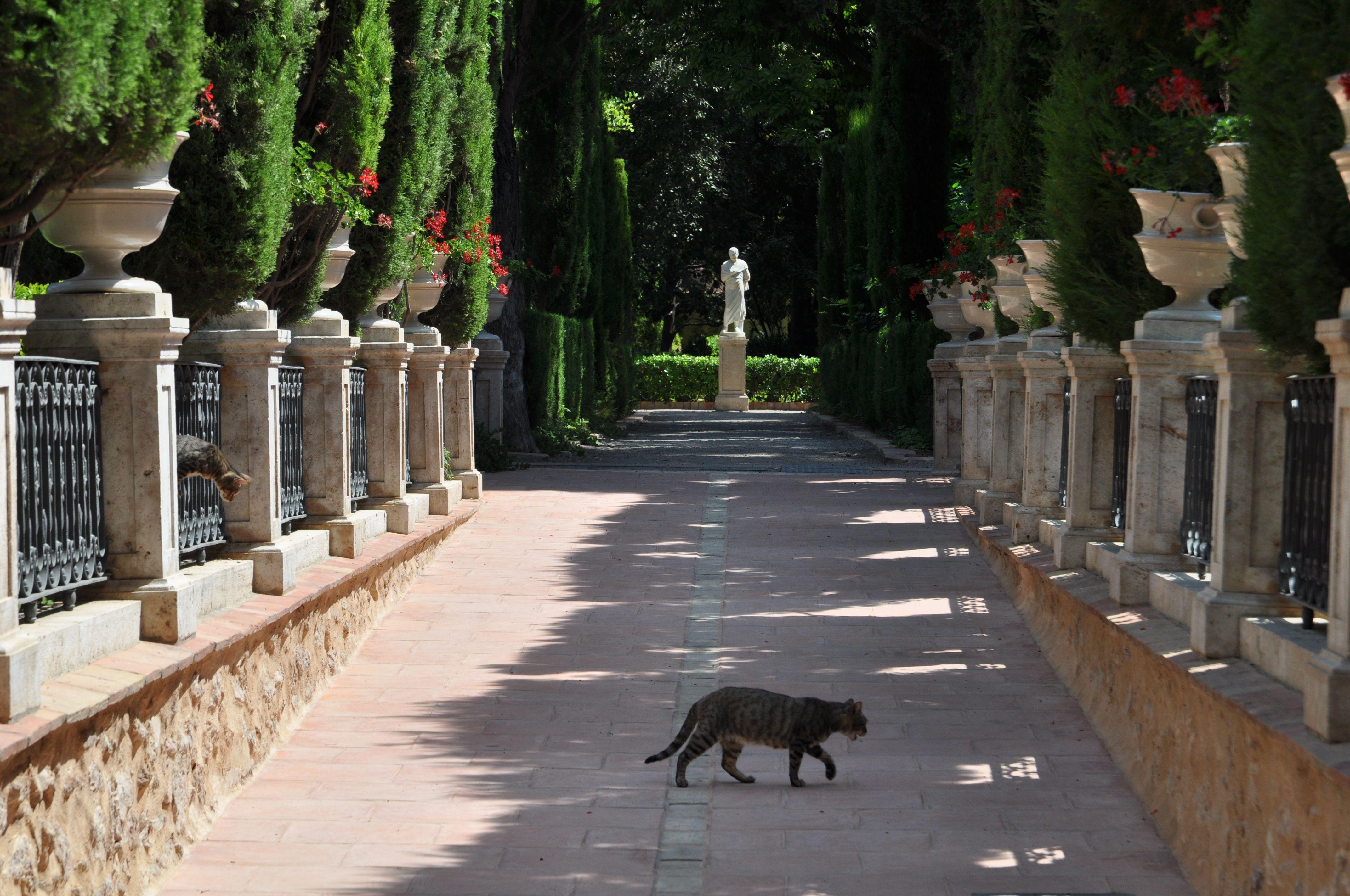Jardines De Monforte Of Jardines De Monforte Lista Roja Del Patrimonio